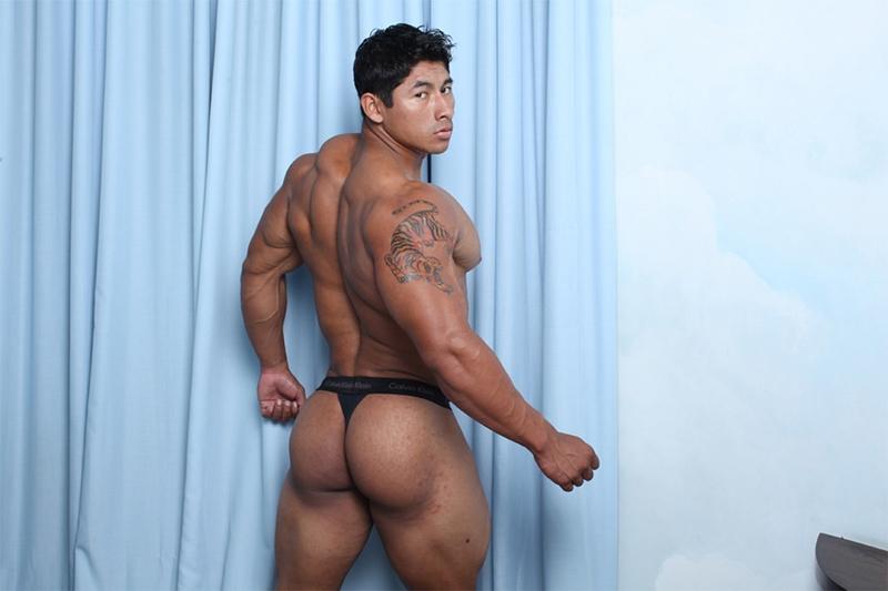Gay asian muscle men pics
