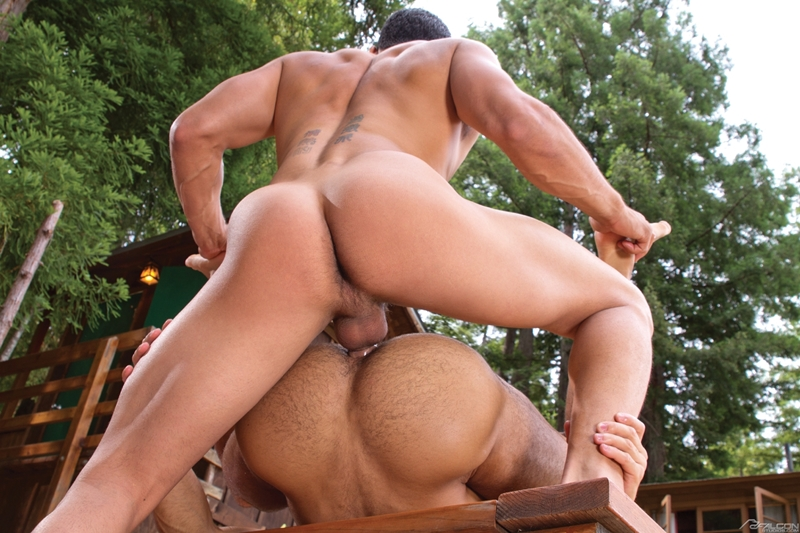 Topher DiMaggio and Sean Zevran fucking