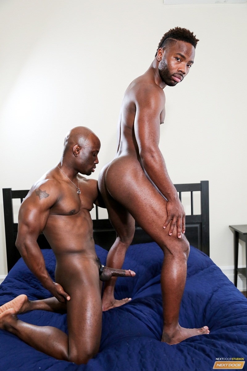 big black dicks gay