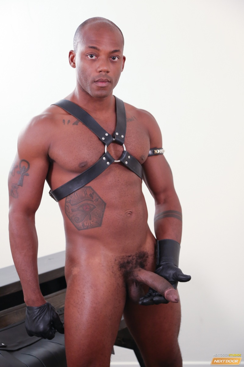 Free gallery gay black cock