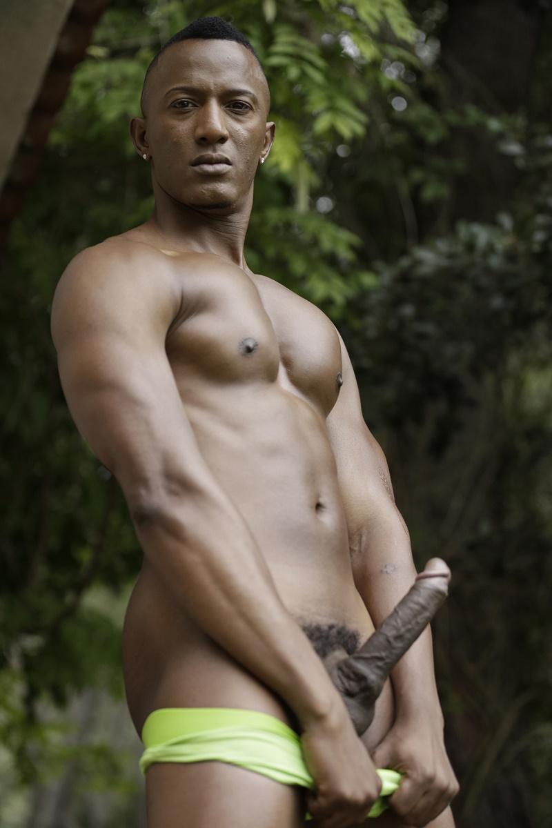 big cock black gay