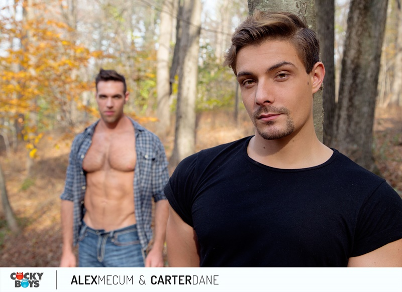 Carter Dane slowly gyrates his hips and fucks Alex Mecum's tight ass while he rides his lap
