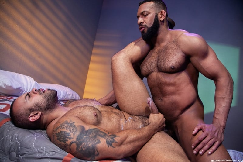 Men for Men Blog Jay-Landford-Lorenzo-Flexx-bareback-fucking-big-black-cock-muscle-ass-hole-RagingStallion-013-gay-porn-pictures-gallery Jay Landford takes ownership of Lorenzo Flexx's hole with passionate kisses and long driving thrusts of his raw glistening cock Raging Stallion